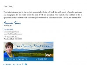 Email Stationery Sample: Connie Sims